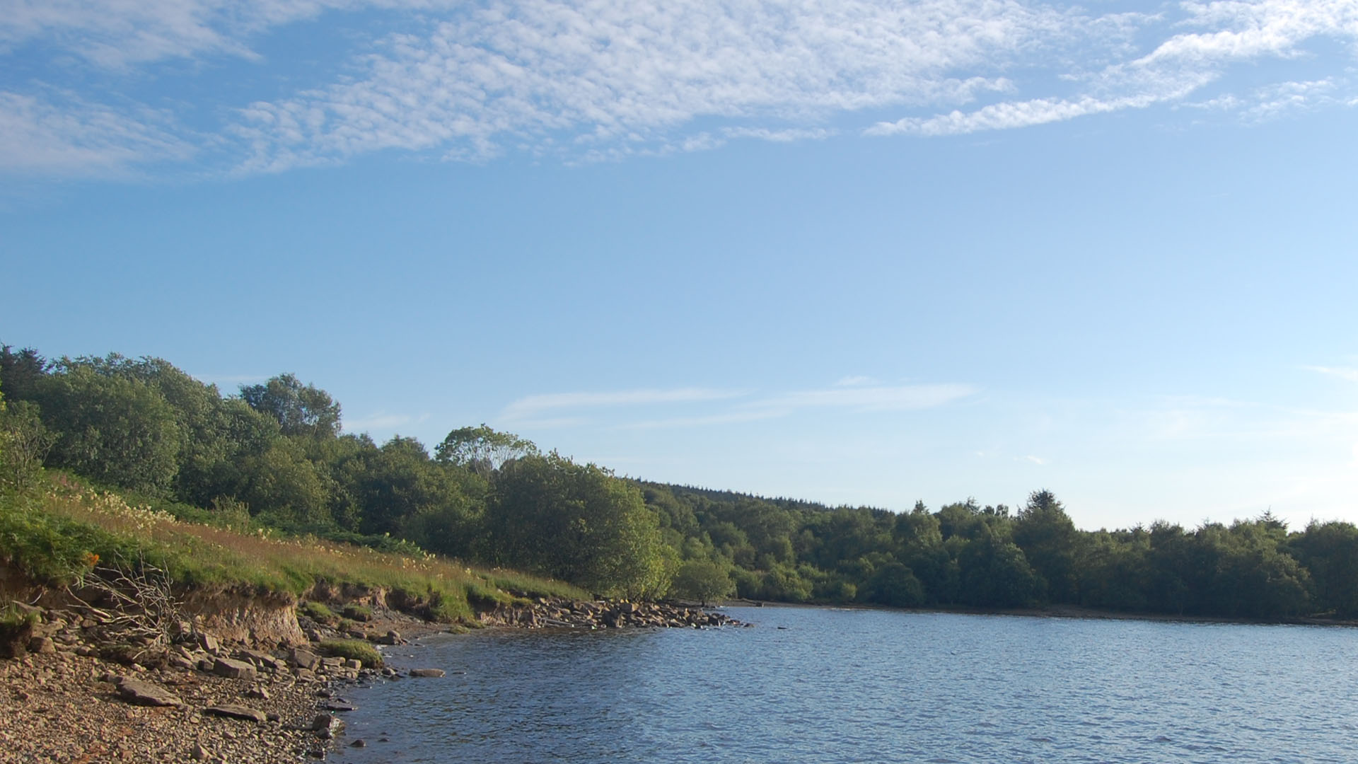 Kielder Water Park Upper North Tyne Tynedale Northumberland