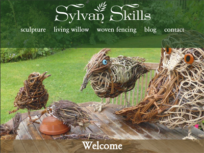 Screenshot of Sylvan Skills' homepage